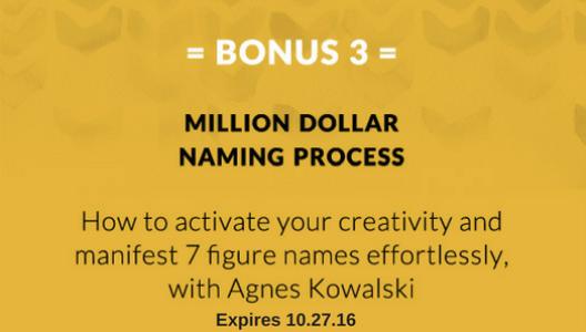 Bonus 3: Million Dollar Naming Process